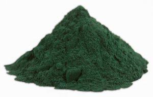 Alga-espirulina